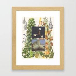 84.  Framed Art Print