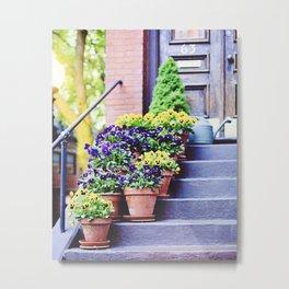 Flowers on Stoop in South End Metal Print