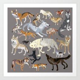 Wolves of the world 1 Art Print