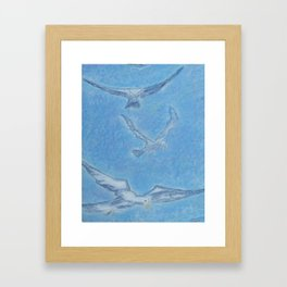 Seagulls in Flight 1 Framed Art Print
