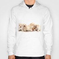 puppies Hoodies featuring Puppies Labrador Retriever by BALEARIC MEDIA GROUP