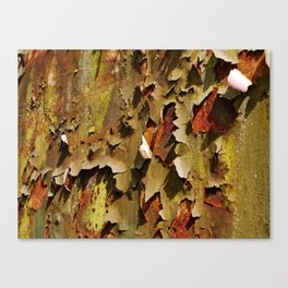 Rusty Stuff (~ Colours of Transience ~ ) II Canvas Print