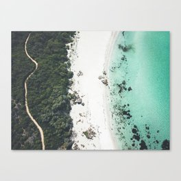 Birds Eye Bliss Canvas Print