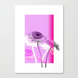 flowers are flowers and pink is the warmest color Canvas Print