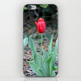 Simple Beauty iPhone Skin