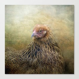 In a Fowl mood... Canvas Print