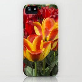 Tulip Vibrance iPhone Case