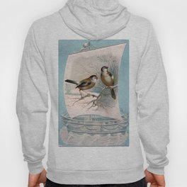 Vintage Birds on a Boat Hoody