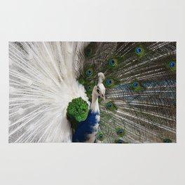 Blue White Peacock Rug