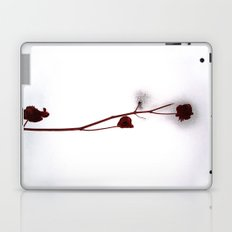 Red Over White Laptop & iPad Skin