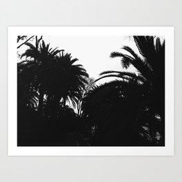 Palm silhouettes in Granada, Spain - Trbel photography Art Print