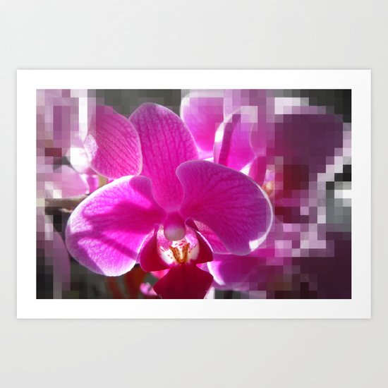 Oh, So Orchid! Art Print