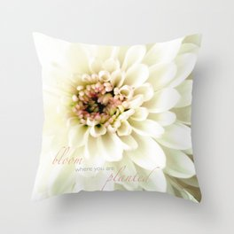 Pom Pon - iPhoneography Throw Pillow