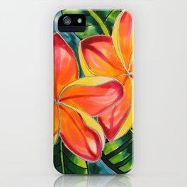 Pink Plumeria of Belize iPhone Case