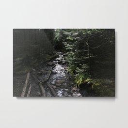Hike to Tabletop Mountain Metal Print