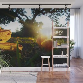 Hello Spring, Flowers and Sunset, photo Wall Mural