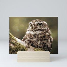 Nature woodland birds Owl bekon light Mini Art Print