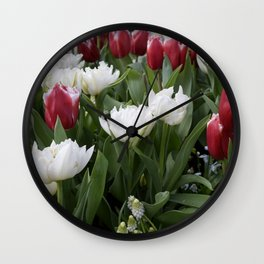 Red and White Tulips Wall Clock