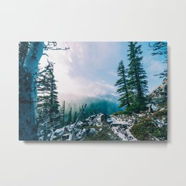 Overlook the Wilderness Metal Print