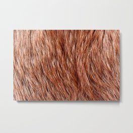 Red fox fur closeup textured cloth abstract Metal Print