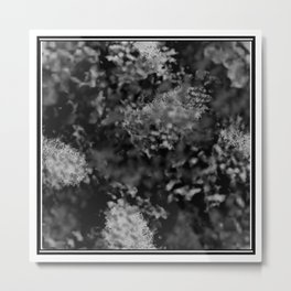 Black and white frost Metal Print