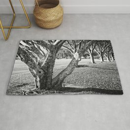 Row of trees in black and white Rug