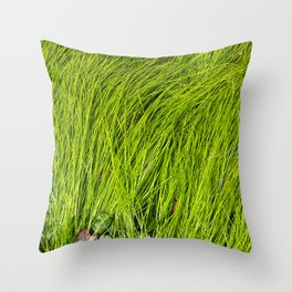 Verdure Throw Pillow