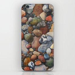 Rocky Road iPhone Skin