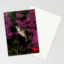 Hovering hummingbird and agastache 59 Stationery Cards