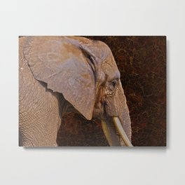 Compassion - Elephant and Quote Metal Print