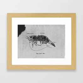 The Incredible World Of False History Cross Sections Pt.2 The Prawn Framed Art Print