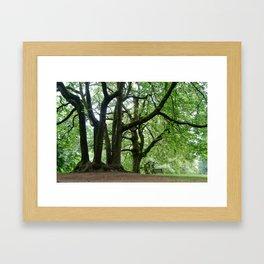 Portland, Oregon Framed Art Print