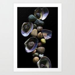 Shells and Stones May... Art Print