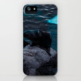 Seals love iPhone Case