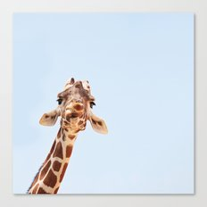 here's looking at you, kid Canvas Print
