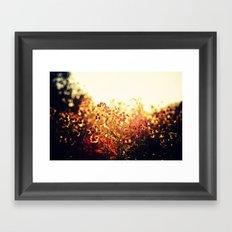 The Light Meets the Dark Framed Art Print