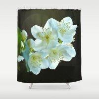 jasmine Shower Curtains featuring Jasmine flower by Svetlana Korneliuk