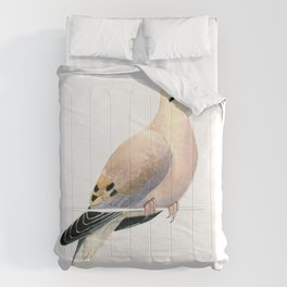 Mourning Dove Watercolor Painting Comforters