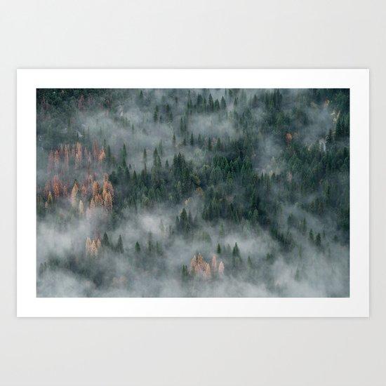 Woods landscape Art Print