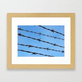 Barb Framed Art Print
