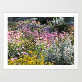 Wildflowers by Day Art Print