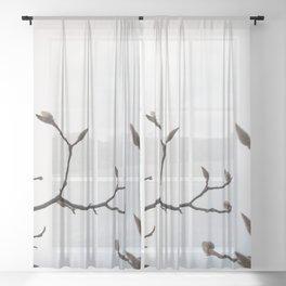 white magnolia Sheer Curtain