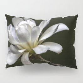 Delicate Offering Pillow Sham