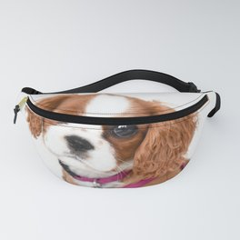 Cavalier King Charles Puppy Girl Fanny Pack