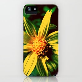 Vintage Yellow Flower iPhone Case