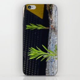 Stubborn iPhone Skin