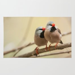 Long-tailed finch Rug