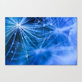Dandelion fluff... 2 Canvas Print