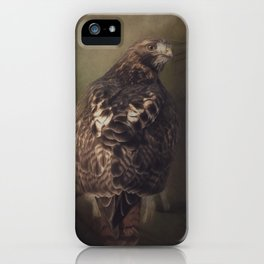 Mr. Red Tail iPhone Case