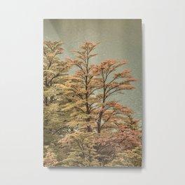 Nature Scene Colored Trees at Glacier Lake- Patagonia Argentina Metal Print